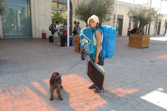 Proč cestuješ se psem?