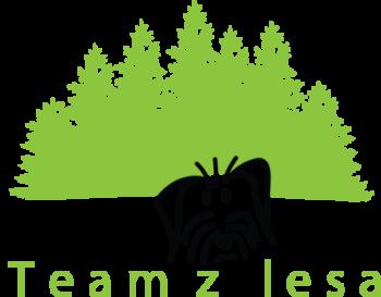 Team z lesa